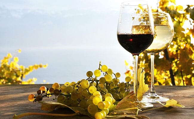 Custom-made wine tours to visit the best wineries in Tuscany with experienced guide