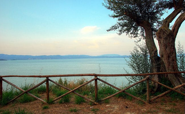 Trasimeno Bike Tour | Bike tour in Tuscany and Umbria at Lake Trasimeno